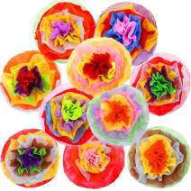 Fiesta Paper Flowers Cinco De Mayo Decorations for Wall Backdrop 10PCS Tissue Pom Poms Centerpieces 16 Inch Mexican Rainbow Theme Party Decorations