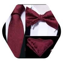 YOHOWA 4PCS Mens Tie and Bow Tie Pocket Square Set, Silk Tie Pretied Bow Tie with Cufflinks Luxury Box