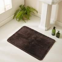 HAOCOO Bathroom Rugs Non-Slip Bath Mat Water Absorbent Soft Shaggy Microfiber Machine Washable Luxury Thick Plush Bath Rugs for Tub Shower (17x24 inch, Brown)