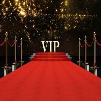 LYWYGG 8x8FT The Red Carpet Glittering with Brilliant Stars Symbolizing Success Photography Backdrop Newborn Kids Studio CP-45-0808
