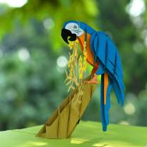 CUTPOPUP Fathers Day Pop Up Card With Parrot- Intricate Design, High Handmade Skills- Great Gift for Birthday, Easter, All Occasions for Fathers, Grandpa, Animal Lovers- Includes elegant envelope