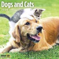 2020 Dogs and Cats Wall Calendar by Bright Day, 16 Month 12 x 12 Inch, Cute Puppy Kitten Animals Canine Feline
