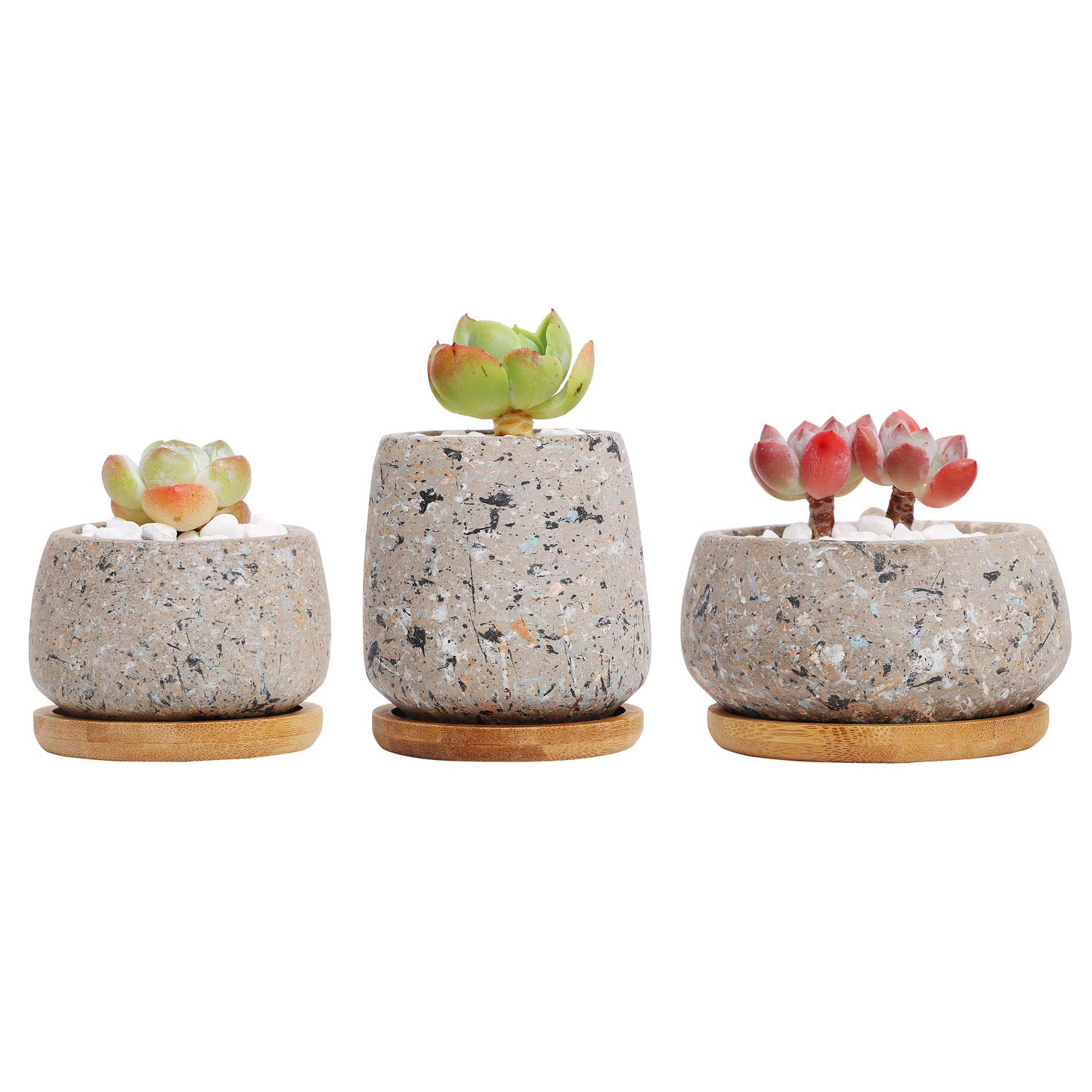 T4U 2.5Inch - 3.5 Inch Cement Succulent Cactus Pot, Concrete Planter Pot Container Window Box, Small Clay Pot for Plants Flowers with Drainage Bamboo Tray for Home Decor, Set of 3(Gray)