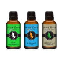 30ML - Trio (3) - Wild Watermelon, Bali Mango Type & Coconut Lime Verbena - Premium Fragrance Oil Trio - 30ML