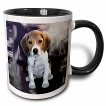 3dRose Beagle Two Tone Black Mug, 11 oz, Black/White