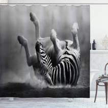 "Ambesonne Africa Shower Curtain, Zebra Rolling in The Dust Savage Animal Mammal Activity Eco Photo, Cloth Fabric Bathroom Decor Set with Hooks, 84"" Long Extra, Charcoal Grey"