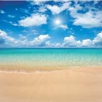 Dudaacvt 10x10ft Vinyl Tropical Beach Backdrop Blue Sea Sky Photo Backdrop Hawaiian Luau Party Background Wedding Birthday Party Studio Props Q005