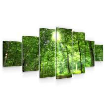 Startonight Large Canvas Wall Art Nature - The Rays That Light up The Green Forest - Huge Framed Modern Set of 7 Panels 40 x 95 Inches