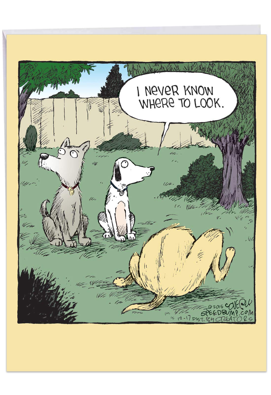 Look Away - Funny Dog Birthday Card with Envelope (Extra Large 8.5 x 11 Inch) - Adult Humor, Joke Notecard - Hilarious Cartoon Dog Stationery Bday Card J2617BDG