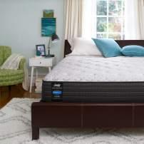 Sealy Response Performance13-InchPlush Pillow Top Mattress, Twin, White