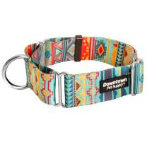 Downtown Pet Supply Big and Wide Durable Martingale Training Collars for Dogs and Puppy in Small, Medium, Large, and Extra Large Dog Collar (Tribal, Medium)