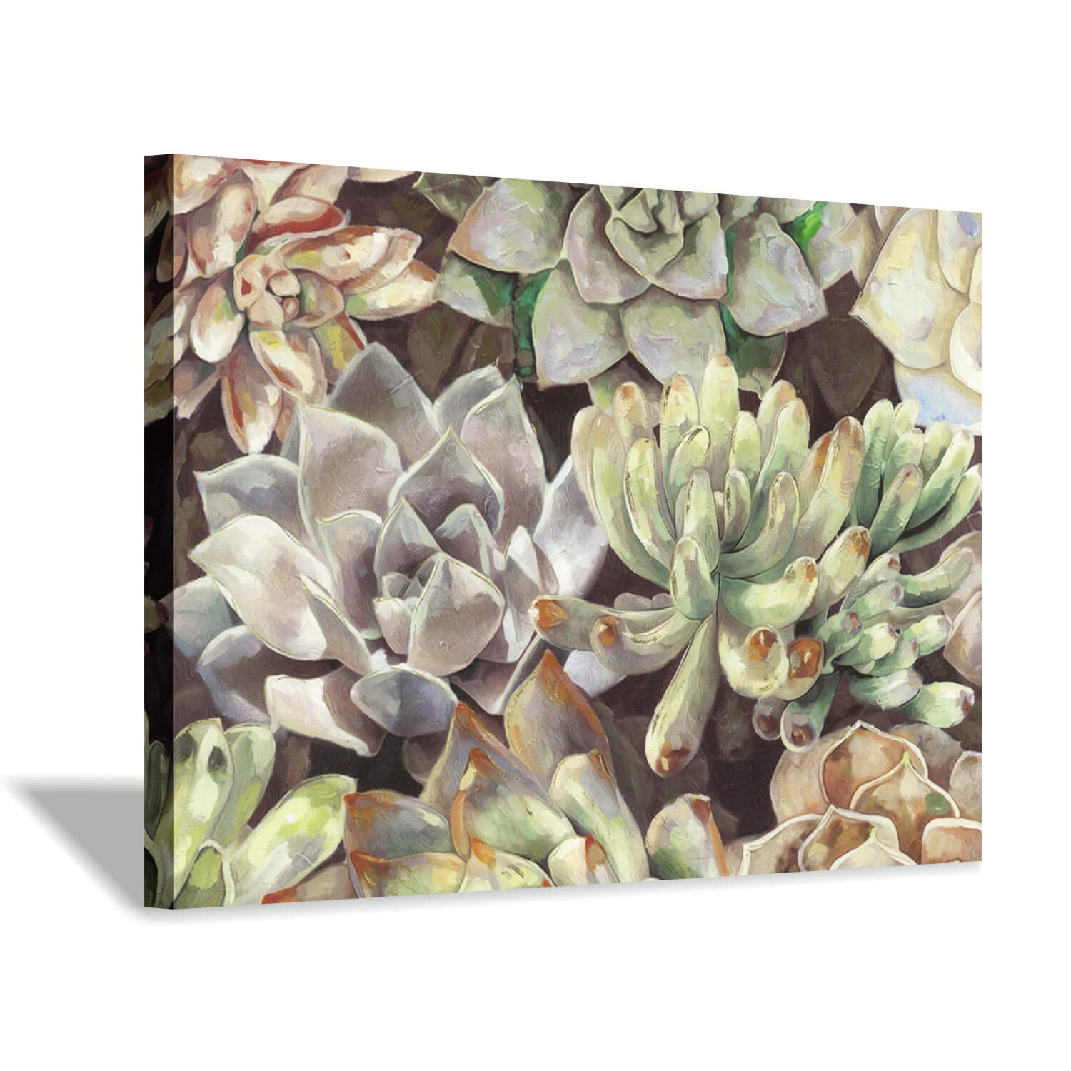 Floral Succulents Canvas Wall Art: Botanical Artwork Painting Print on Wrapped Canvas for Bedroom(36''x24'')