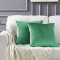 GIGIZAZA Decor Throw Couch Pillow Covers,Sofa Cushion Teal Pillow Covers,Velvet Pillow Cases 24 x 24inch