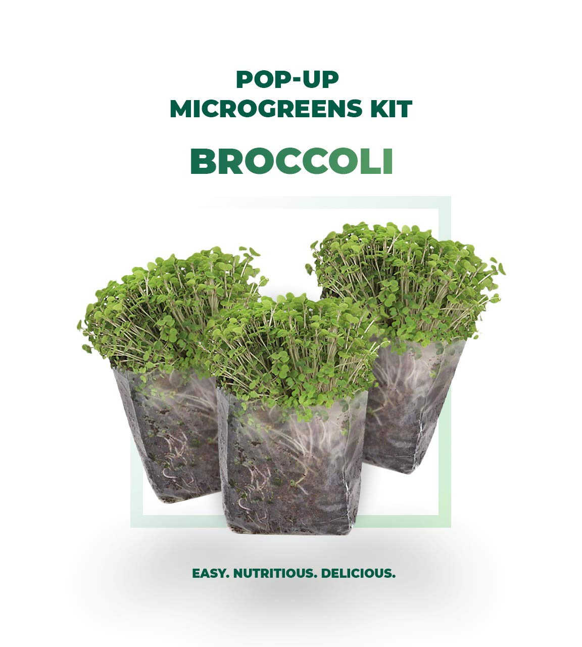Indoor Microgreens Seed Starter Vegan Growing Kit – Includes Broccoli Seeds, 3qts Organic Fiber Potting Soil and Pop-Up Bag – Add Water and Grow Vegetables for Healthy Salads – by Window Garden
