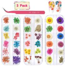 3 Boxes Dried Flowers for Nail Art, KISSBUTY 36 Colors Dry Flowers Mini Real Natural Flowers Nail Art Supplies 3D Applique Nail Decoration Sticker for Tips Manicure Decor (Flowers Gypsophila Daisy)