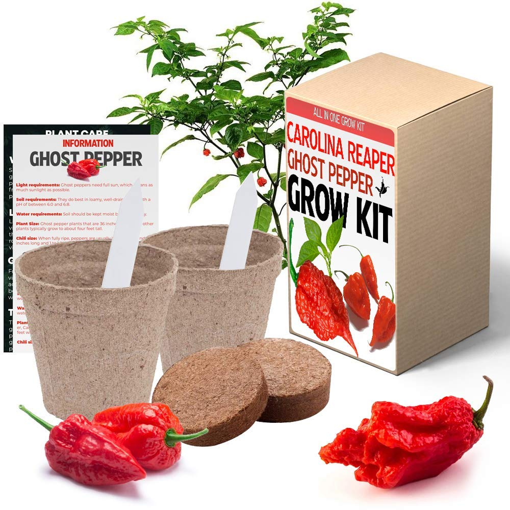 Carolina Reaper and Ghost Pepper Chili Grow Kit - All in One Pepper Seed Plant Growing Kit Gift