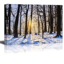 "wall26 Winter Forest Sunset Lovely Blue Snow Color and Long Shadows from The Barren Trees - Canvas Art Wall Decor - 16"" x 24"""