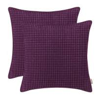 BRAWARM Pack of 2 Cozy Throw Pillow Covers Cases for Couch Sofa Home Decoration Supersoft Corduroy Corn Striped with Piping Both Sides 22 X 22 Inches Plum Purple