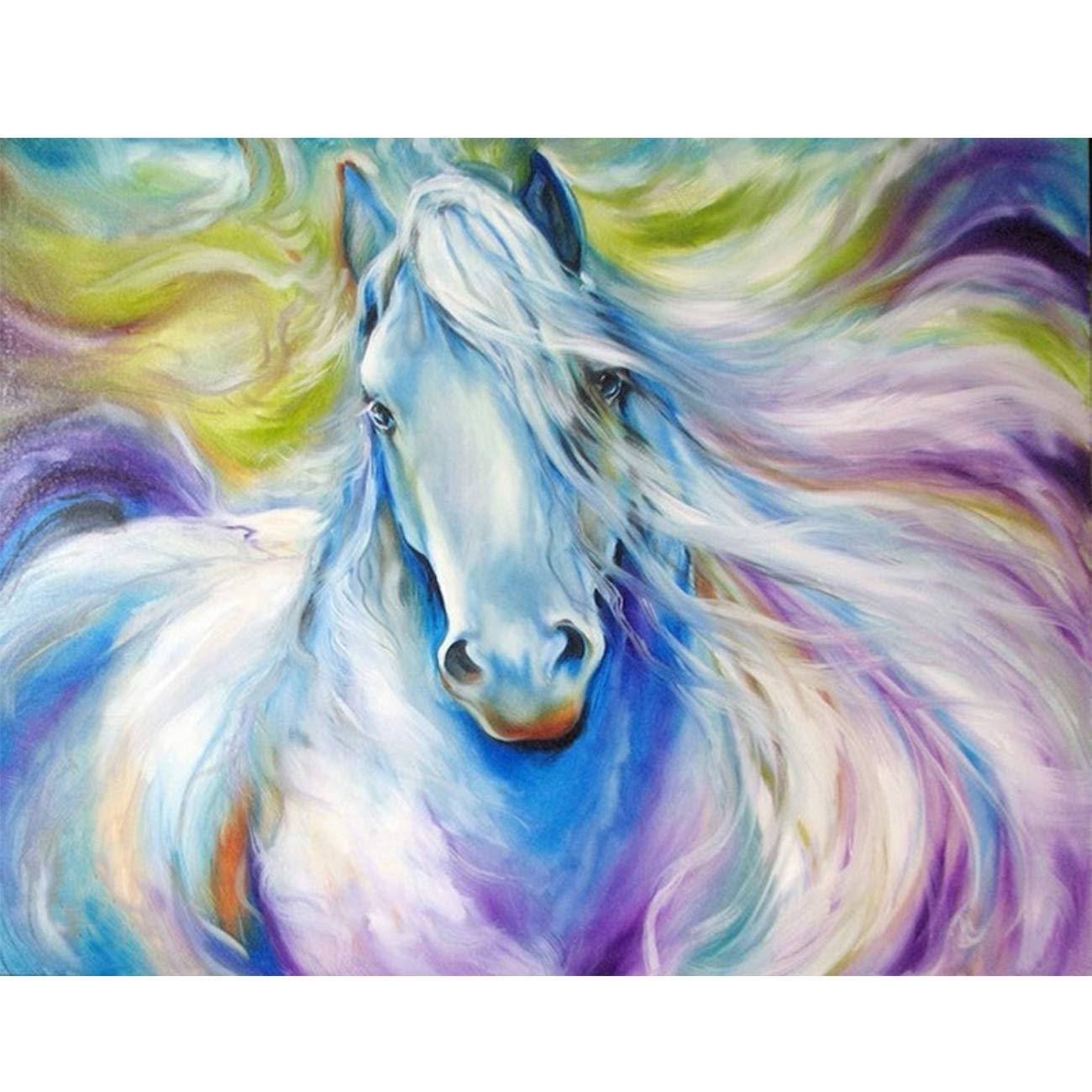 SKRYUIE 5D Diamond Painting The Horse Painting Full Drill by Number, Paint with Diamonds Art Rhinestone Embroidery Cross Stitch Craft Decor 30x40cm (12x16inch)