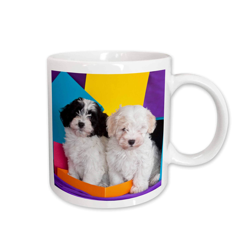 3dRose 142961_1 Mug, 11oz, White