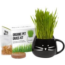 Cat Grass Growing Kit with Organic Seed, Organic Soil and Cat Planter. Great Learning Activity or Project for Home. Natural Hairball Control, Remedy for Cats. Natural Digestive Aid. USA Manufactured.