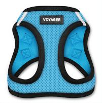 """Best Pet Supplies, Inc. Voyager Step-In Air Dog Harness - All Weather Mesh, Step In Vest Harness for Small and Medium Dogs by Best Pet Supplies - Baby Blue Base, X-Small (Chest: 13"""" - 14.5""""), Model:207-BBB-XS"""