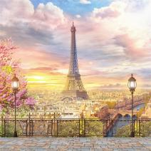 AOFOTO 10x10ft Eiffel Tower Backdrop Paris City Landscape Retro Terrace Architecture Balcony Streetscape Wedding Photography Background Girl Bride Newlyweds Photoshoot Studio Props