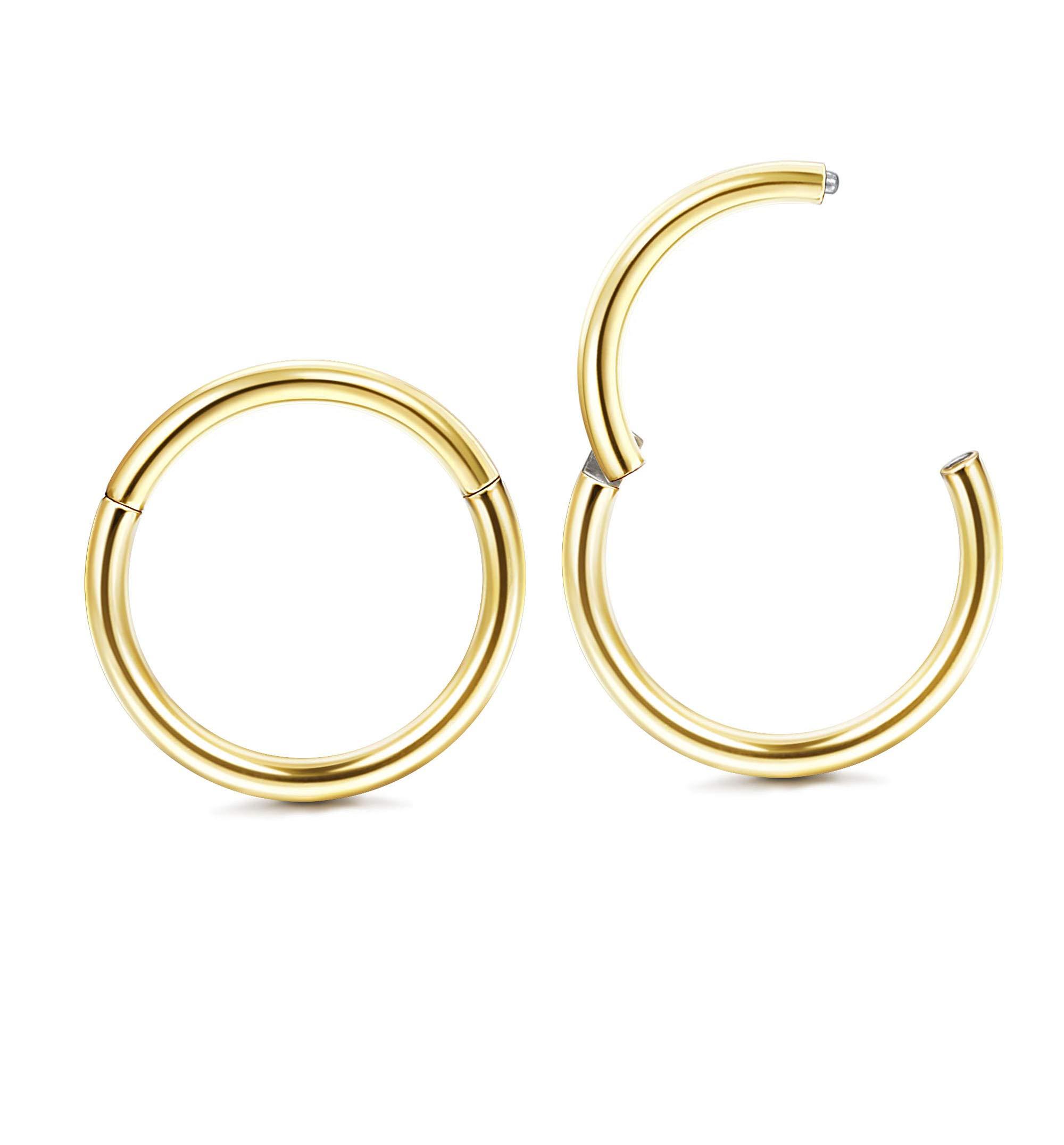 Milacolato 2Pcs G23 Titanium 16-18G Nose Rings Hoop Lip Rings Hinged Segment Rings Helix Daith Tragus Cartilage Earrings Piercing Jewelry