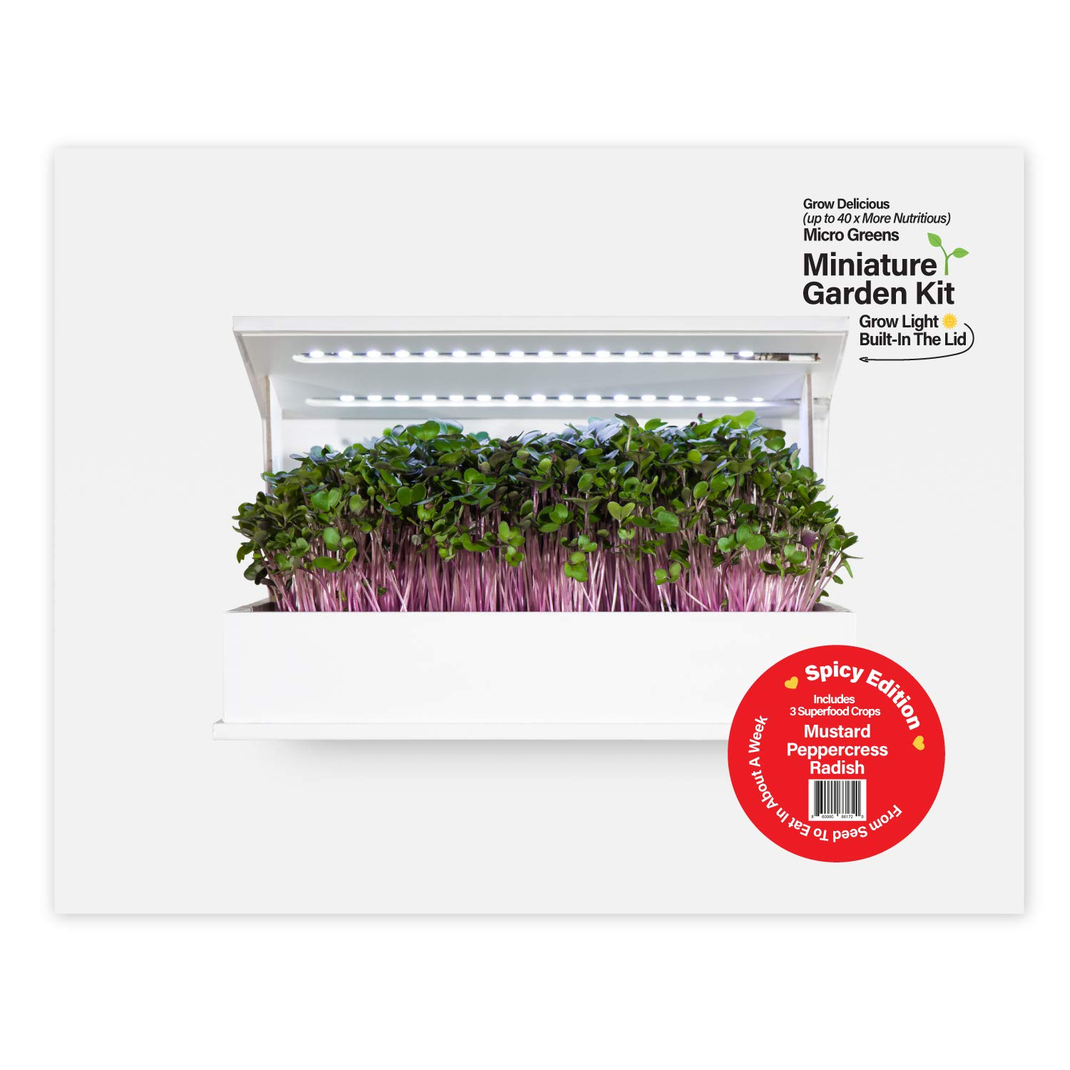 Grow Book Countertop Microgreens Garden - Spicy Edition - Indoor Gardening Solution - Includes Seeds, Soil & LED Lights - Grows in About 10 Days - Organic & Non-GMO