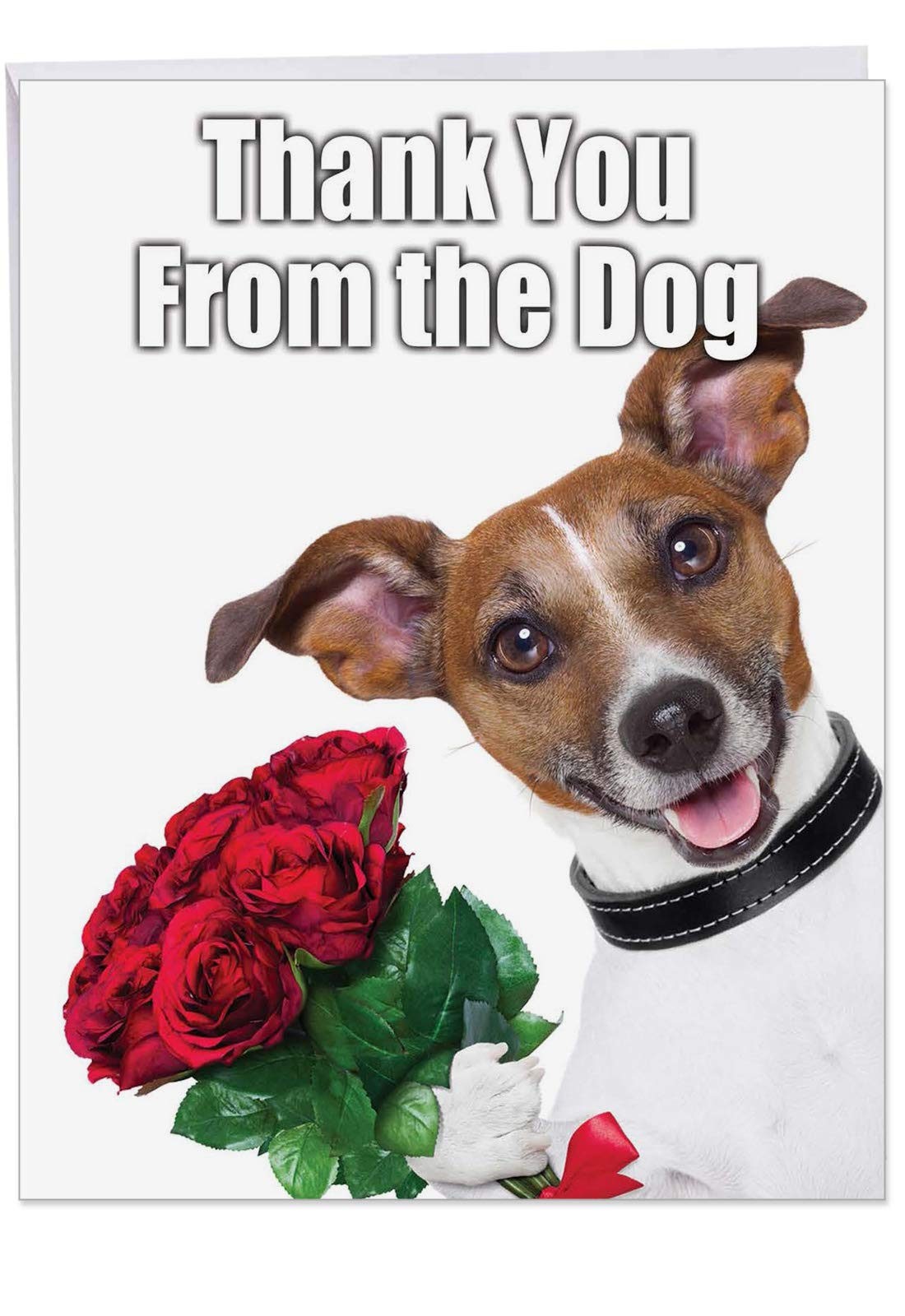 XL 'Thank You From the Dog' Card with Envelope 8.5 x 11 Inch - Appreciation Greeting Card with Cute Puppy Holding a Bouquet, Large Stationery for Birthdays, Holidays, Parties J3614