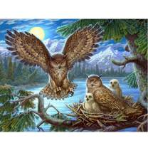 5D DIY Diamond Painting Owl Family Full Drill by Number Kits, Craft Decor by SKRYUIE, Paint with Diamonds Embroidery Set DIY Craft Arts Decorations (12x16inch)