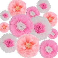 Paper Flowers Decorations,12 Pcs Tissue Paper Flower DIY Crafting for Wedding Backdrop Nursery Wall Baby Shower Decoration,Pink