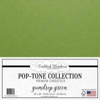 Gumdrop Green Cardstock Paper - 12 x 12 inch 65 lb. Premium Cover - 25 Sheets from Cardstock Warehouse