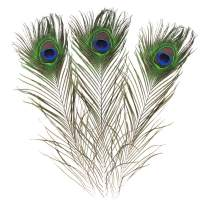 Real Natural Peacock Feathers 16-18 inches (40~45cm) Great Wedding Christmas Halloween Decorations House Decoration (100)