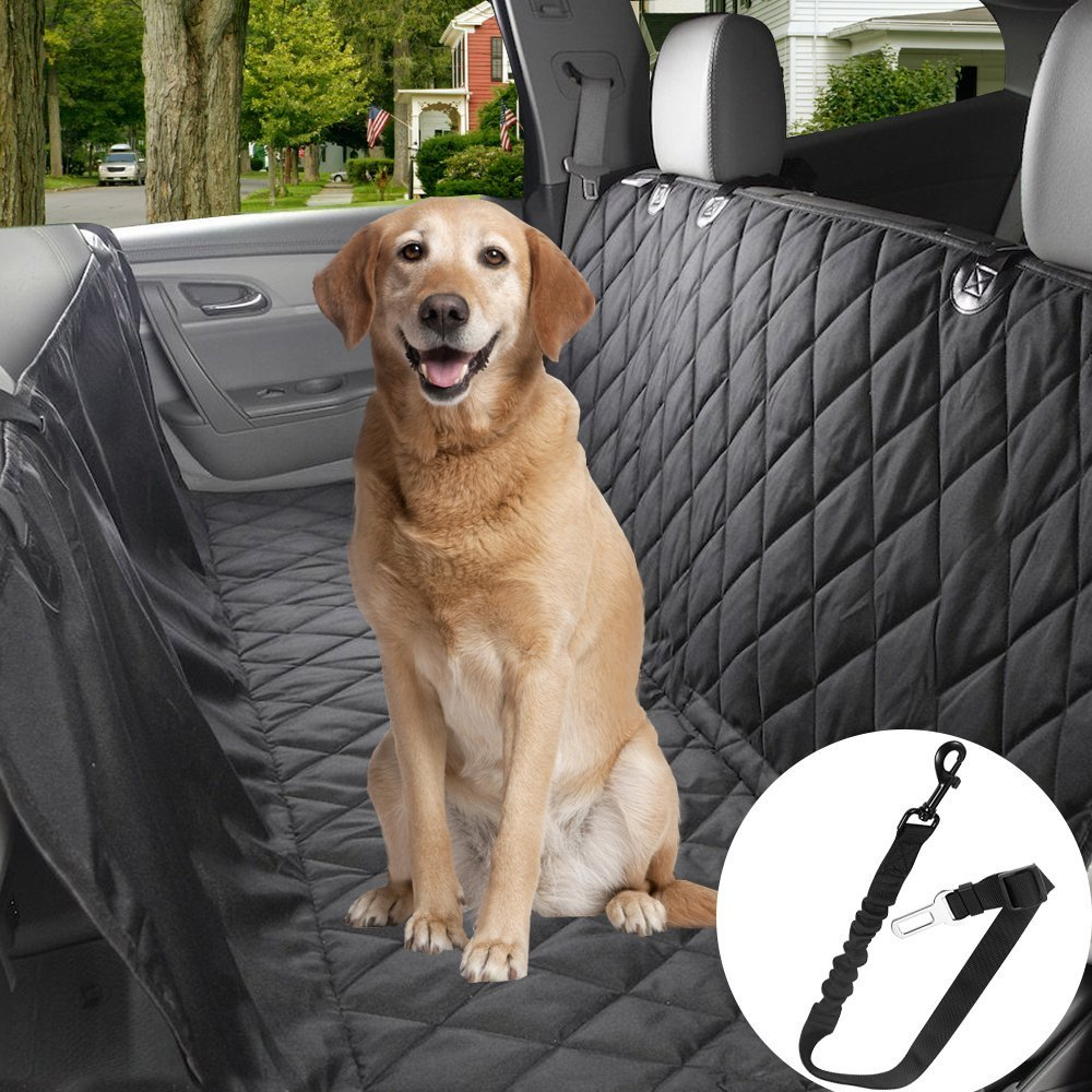 YUCHEL Dog Repellent Ultrasonic, Outdoor Solar Powered and Weatherproof Ultrasonic Pest Repeller with PIR Sensor