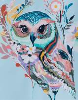 YXQSED Framless Paint by Numbers for Adults Paint by Numbers for Kids Beginner - Rainbow Owl 16X20 Inch