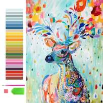 Zoedsre DIY 5D Diamond Art Painting Kits for Adults & Kids, Colorful Deer Full Drill Round Diamond Crystal Gem Arts Painting by Numbers, Perfect for Home Decoration (12x16inch).