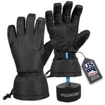 Wildhorn Tolcat Unisex Waterproof Leather Ski Gloves- Touchscreen Compatible