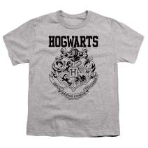 Popfunk Harry Potter Hogwarts Logo Kids Youth T Shirt & Stickers