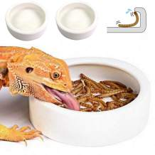 Reptile Water Food Bowl, 2PCS Worm Dish Ceramic Pet Bowls, Anti-Escape Mini Reptile Feeder, Mealworms Bowl for Lizard Bearded Dragon Gecko Chameleon Hermit Crab Dubia Reptile Rock Cricket Dish