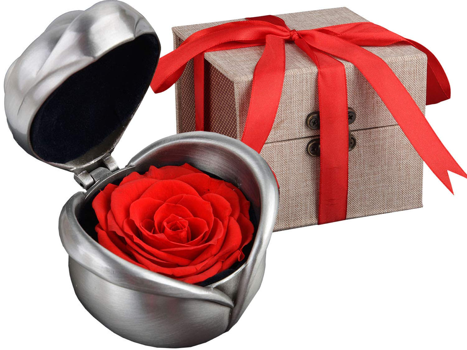 Coxeer Preserved Rose Flower, Coxeer Forever Rose Never Withered Rose, Upscale Immortal Flowers, Fresh Roses, Eernal Life Flowers Proposal Wedding Birthday Valentine's Day Gifts for Women Mom Gril Her