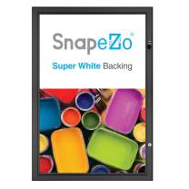 SnapeZo Movie Poster Case 24x36 Inches, Black 1.8 Inch Aluminum Profile, Locking Poster or Menu Case, Lockable Case, Wall Mounting, Professional Series