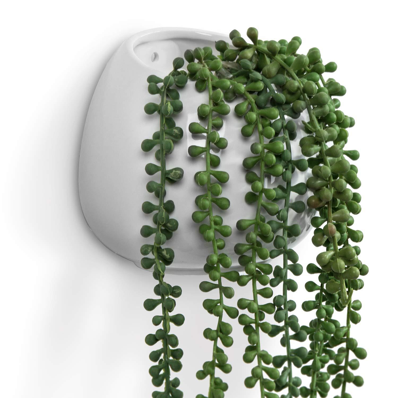 MyGift 6 Inch White Ceramic Wall Mounted, Hanging or Freestanding Decorative Flower Planter Vase Holder Display