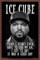 "Trends International Ice Cube - Good Day, 14.725"" x 22.375"", Mahogany Framed Version"
