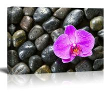 wall26 - Pink Orchid Flower Surrounded by Rocks with Rain Drops - Canvas Art Home Art - 12x18 inches