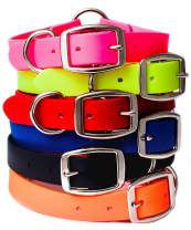 Waterproof Dog Collar with Heavy Duty Center Ring | Dog Collar for Small, Medium, Large, or XL Dogs
