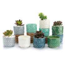 T4U 2.5 Inch Ceramic Succulent Planter Pots with Drainage Hole Owl Set of 12, Small Ice Crack Glaze Porcelain Cactus Plant Holder Container Gift for Mom Sister for Home Office Desk Garden Decoration