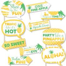 Big Dot of Happiness Funny Tropical Pineapple - Summer Party Photo Booth Props Kit - 10 Piece
