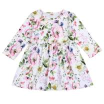 Toddler Baby Little Girls Fall Dresses Clothes Long Sleeve Floral Rose Print Ruffle Princess Party Dress Outfits