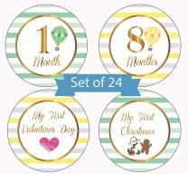Baby Milestone Monthly Stickers Hot Air Balloon Design by Serene Selection, 24 Premium Stickers, 12 Months, Holidays and Achievements, Baby Shower Gift